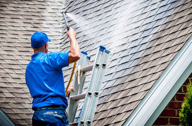 spring field roof cleaning